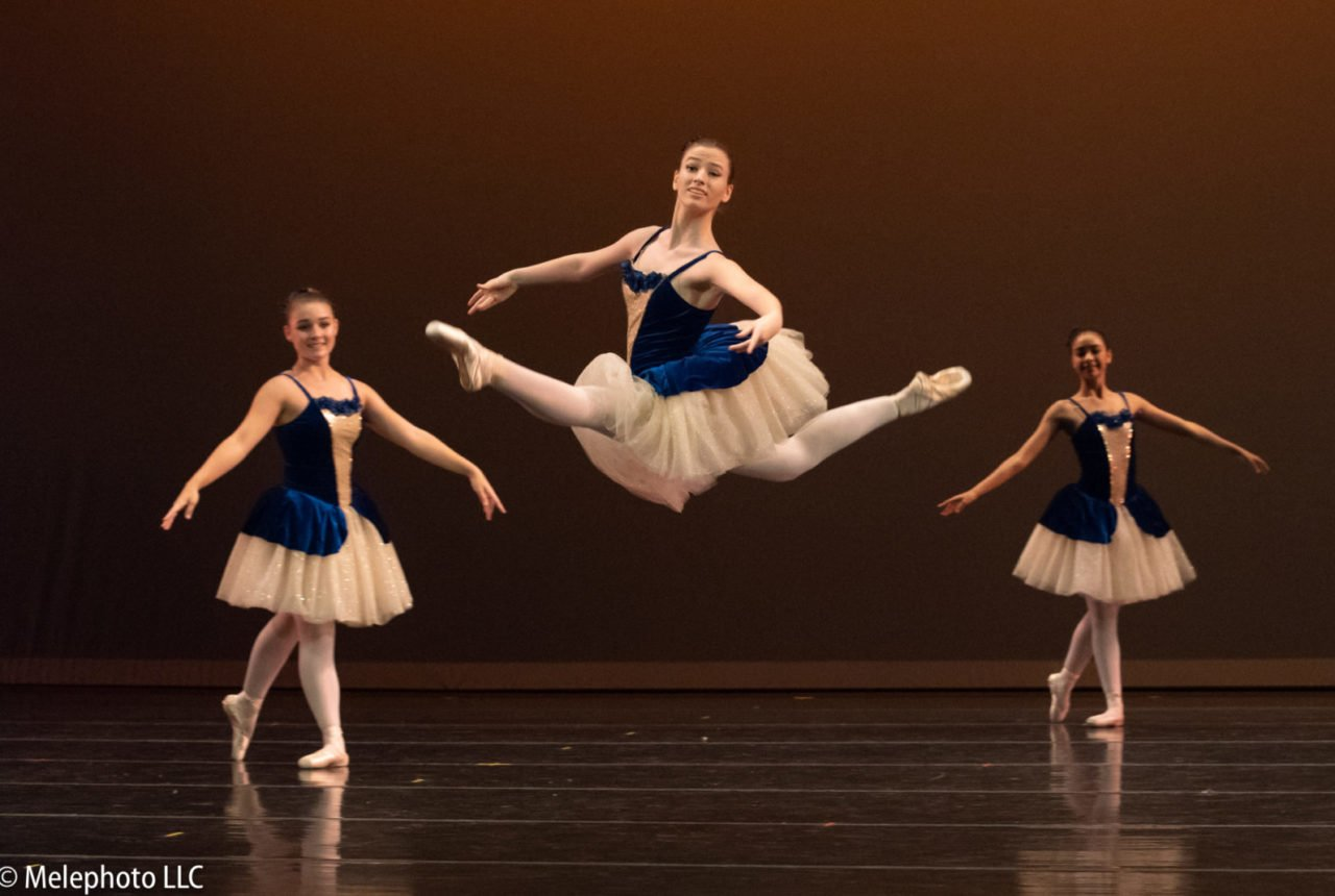 Virginia National Ballet Northern Vas Premier Ballet Company